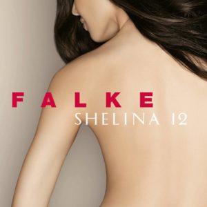 Shelina kh 12