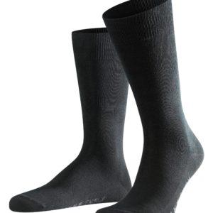 Family sokkar