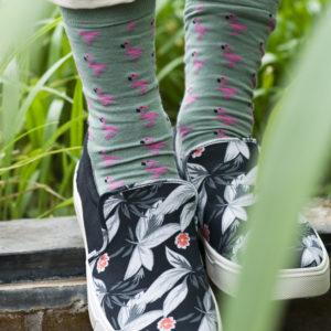 Flamingo SO